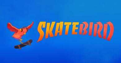 skatebird splash 1080 SkateBird